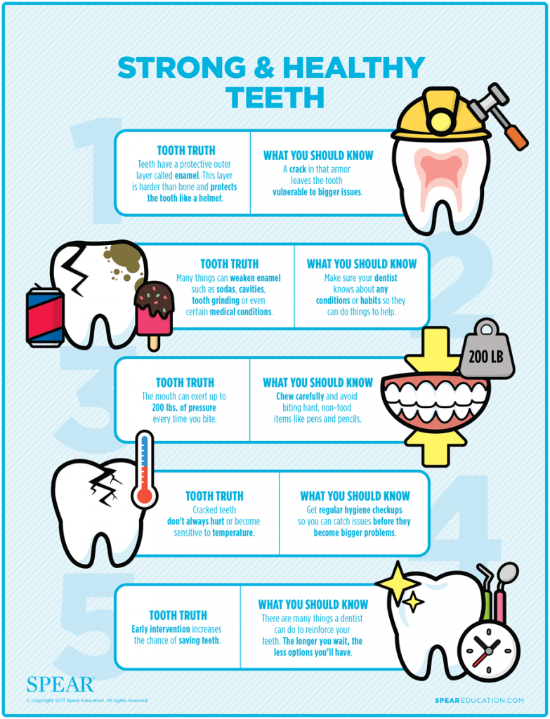 Strong & Healthy Teeth Infographic